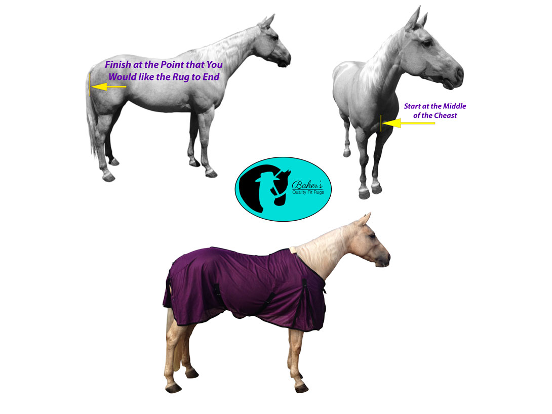 How To Measure A Horse For Rug